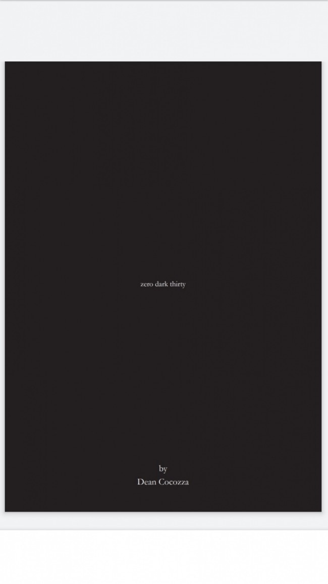 Book Of The Week: 'zero dark thirty' -  by Dean Cocozza